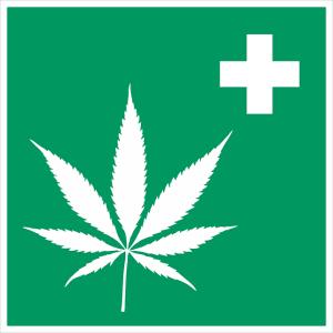 cannabis-medicinal-san-pedro
